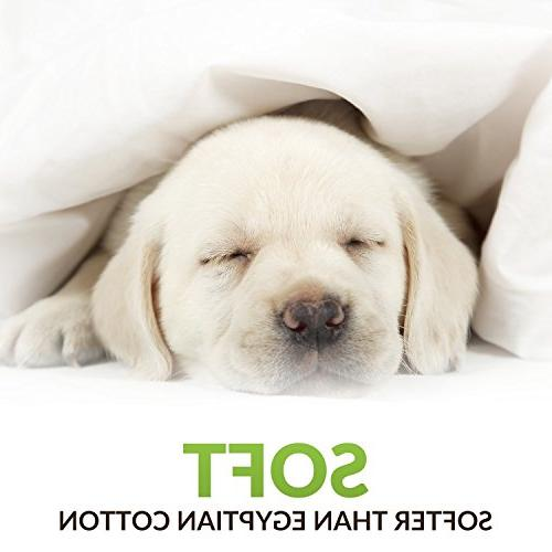 Cosy Collection Bamboo Standard Pillowcases - of Soft Cool Hypoallergenic Natural Blend - Resists Dust