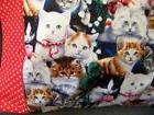 TRAVEL SIZE PILLOW CASE  LARGE ASSORTMENT OF KITTIES/RED & W