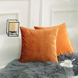 HOME BRILLIANT Set of 2 Velvet Throw Pillow Covers Square De